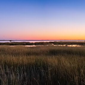 Where the horses go... by Chris Reynolds - Landscapes Sunsets & Sunrises ( panorama, sunset, virginia, look at those colors, canon )