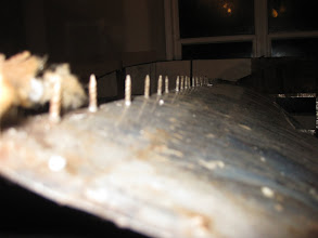 Photo: Close up of one of the seams in the roof and the number of nails used to attach it to the roof support beam which was totally rotted away.