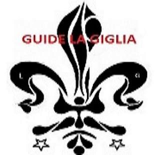 Guide informatiche La Giglia - náhled