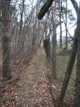 Photo: idę wzdłuż płotu