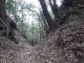 小安堂峠(奥から下山する)