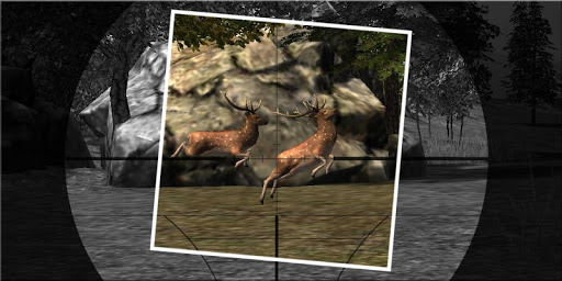 Kill The Deer Hunting Game 3D