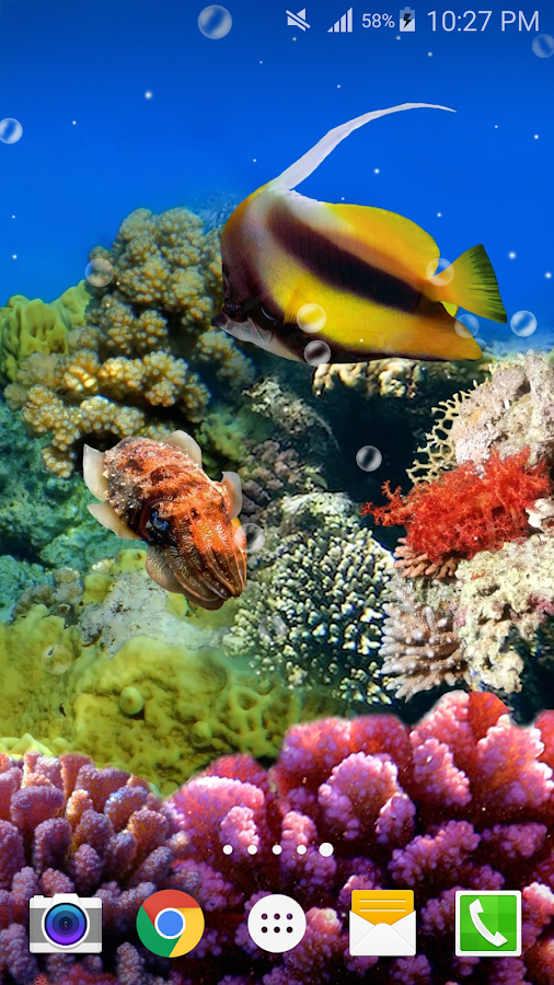 Ocean fish live wallpaper free android apps on google play for Live fish store