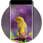 Purple Symphony Little Bird theme APK