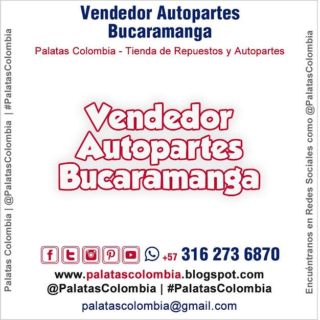 Vendedor Autopartes Bucaramanga