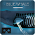 Blue whale VR 1.0.3 Android Latest Version Download