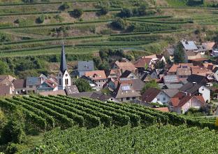 Photo: Bickensohl - umgeben von Rebflächen. Spätburgunder (34%) und Grauburgunder (25%) sind die Hauptrebsorten.