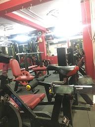 The Lion Gym photo 2