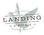Logo for The Landing