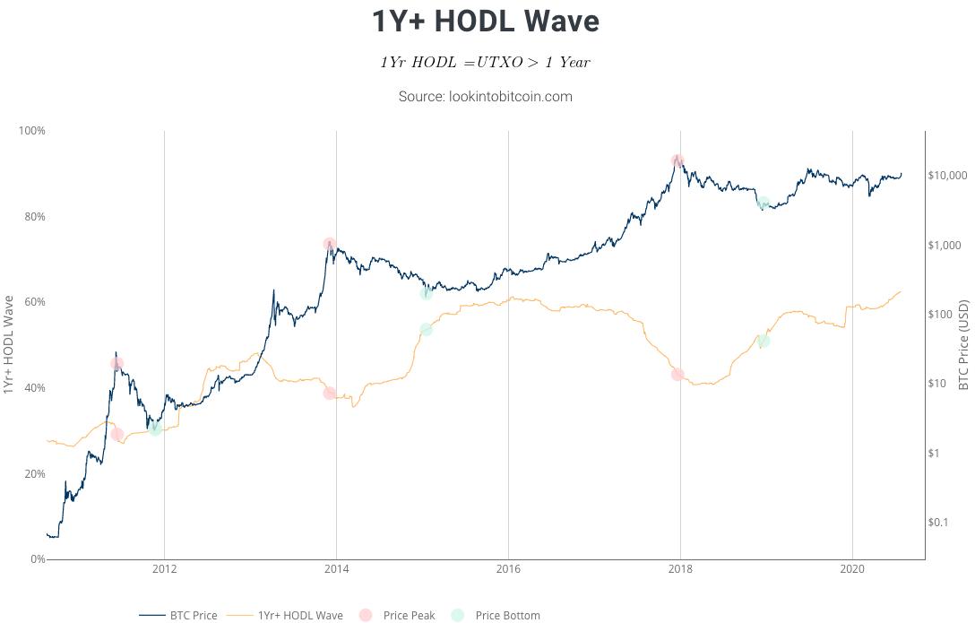 1Y+ HODL Wave