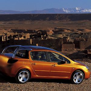 Fondos de Peugeot 307 Gratis