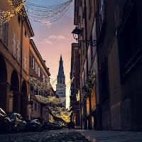 Modena Dorata di