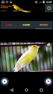 Canarytrain for PC-Windows 7,8,10 and Mac apk screenshot 7