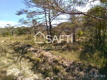 terrain à La Roque-Esclapon (83)