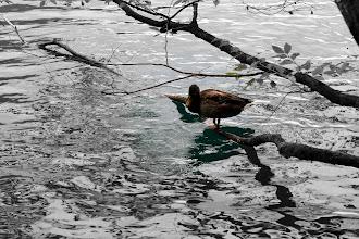 Photo: Plitwickie Jeziora