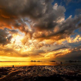 by Edward Allen - Landscapes Sunsets & Sunrises (  )
