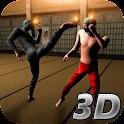 Ninja Kung Fu Fighting 3D icon