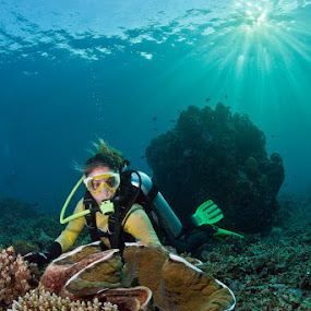 Cass and the giant clam by Paul Cowell - Landscapes Waterscapes