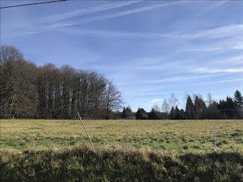 terrain à Saint-Jal (19)