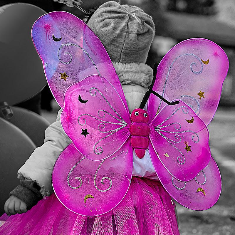 La mia farfallina di Marilena Valra