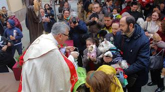 El párroco de San Juan bendiciendo las mascotas.