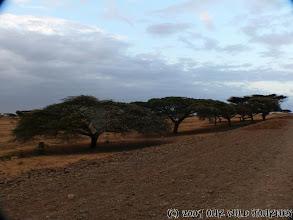 Photo: Typické etiopské silnice ! / Typical ethiopian roads !