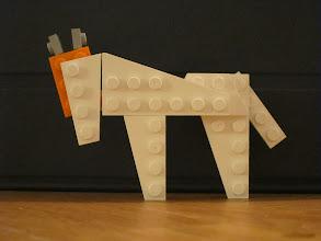 Photo: A horse.