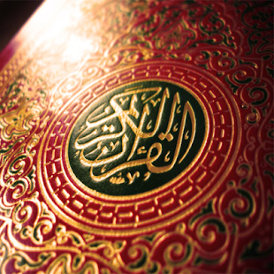 Download Al-Quran Tafsir Ibnu Katsir For PC Windows and Mac