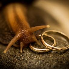 Wedding photographer Aleksey Chernikov (chaleg). Photo of 18.02.2015