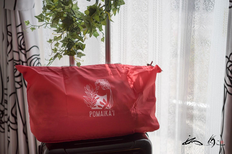 Carry–on Bag