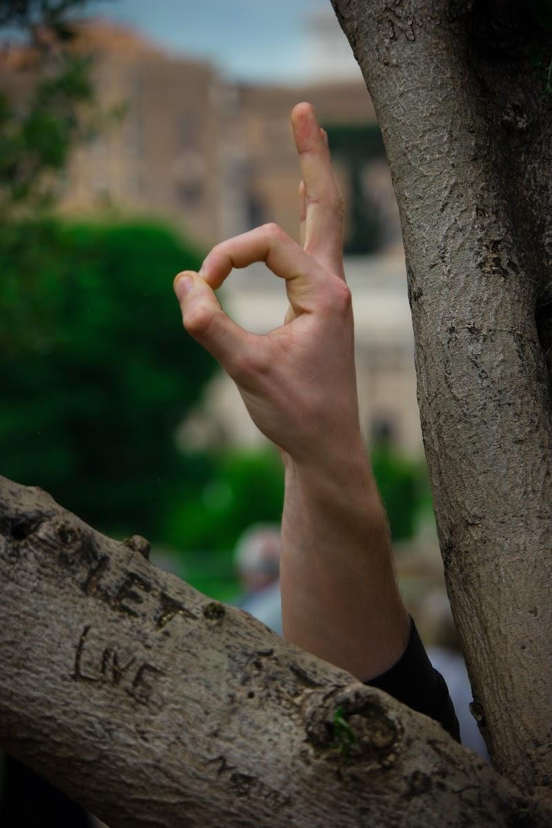 """""""LET LIVE"""" di felix_"""