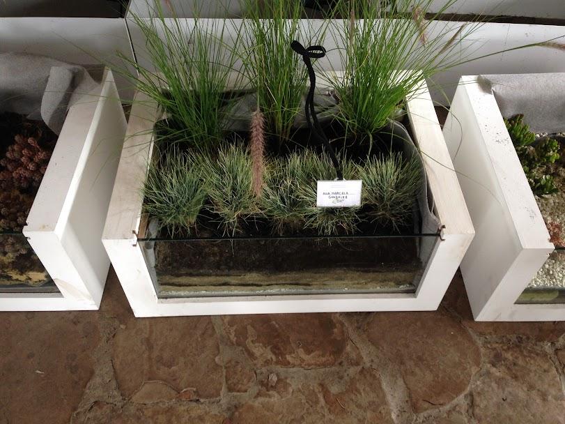 Jardines verticales y cubiertas vegetales