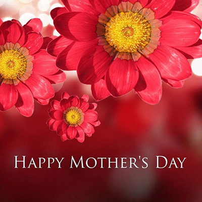 mother's day flower cards  android apps on google play, Natural flower