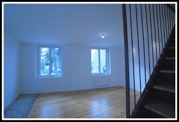 appartement à Andrezieux-boutheon (42)