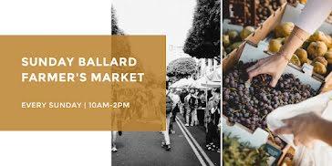 Sunday Farmer's Market - Twitter Post Template