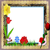 corona Photo flower Frames
