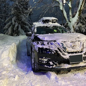 エクストレイル HNT32 H30式 20X 4WD 3列シートのカスタム事例画像 章吉さんの2021年01月01日18:14の投稿