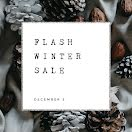Flash Winter Sale - Instagram Carousel Ad item