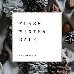 Flash Winter Sale - Instagram Ad item