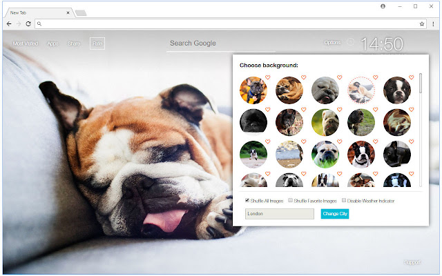 Bulldog Dogs Wallpapers HD Custom Bull NewTab