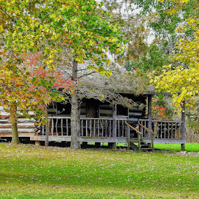 Cabin in the Woods by Kathy Woods Booth - Buildings & Architecture Other Exteriors ( michigan, cabin, park, autumn, colors, woods )
