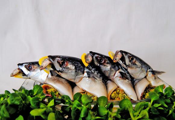 Il pesce grosso mangia quello piccolo. di Norasmind