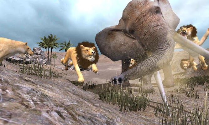 Lions Simulator Survival - screenshot