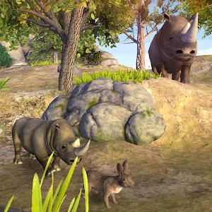 Rhino Simulation for PC and MAC