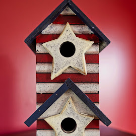 Patriotic Birdhouse by Svemir Brkic - Artistic Objects Other Objects ( red, white, blue, bird, house,  )