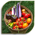 Vegetable Gardening (Guide) icon