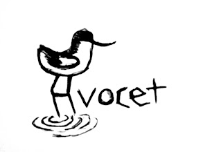 Photo: Eve Rowland - A for avocet