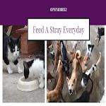 Feed A Stray Everyday icon