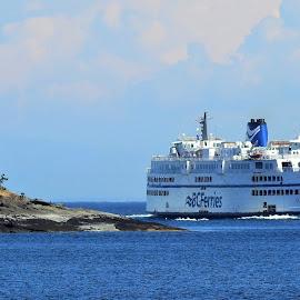 BC Ferry by Carol Leynard - Transportation Boats ( ferry, ship, large ferry, boat, transportation )
