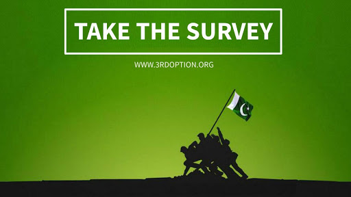 3rd Option Survey for PC